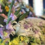 後飾りの意味とは?宗教別の後飾り祭壇の組み立て、ご飯や花などお供え物や仏具の飾り方、セットやレンタル情報まで徹底解説!