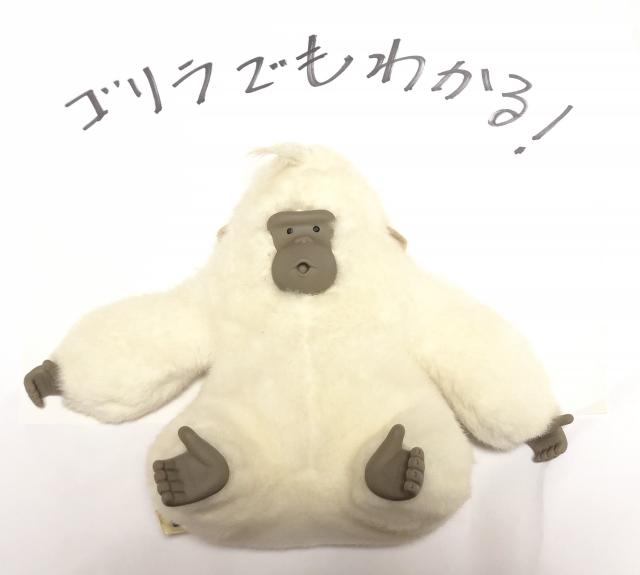 gorirademowakaru